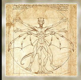 Contrary to popular belief, Vitruvian Man is not one of the characters in the rear of the Mos Eisley Cantina.